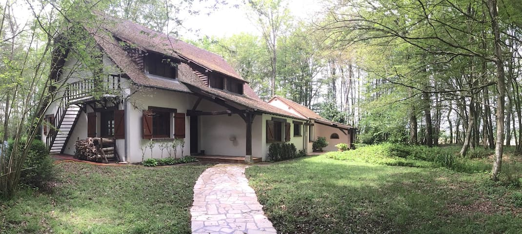La Grande Baudonniere: A great house in the woods