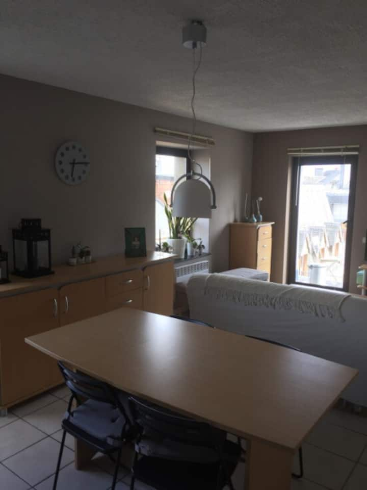 Appartement Arlon centre .