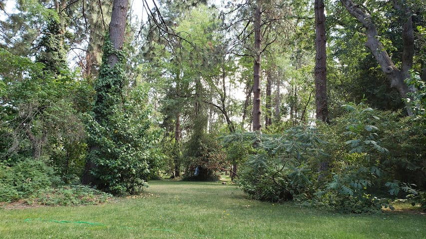Wooded, Tranquil, Retreat