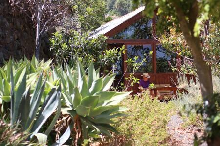 """Ferienhaus """"San Vicente"""" La Palma"""