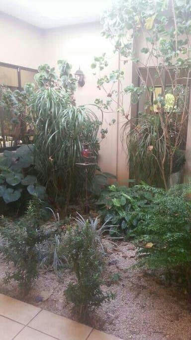 Es un bello jardin interno q da paz.