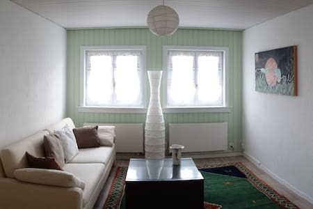 Charming apartment in Schlieren close to Zurich - Schlieren - 公寓