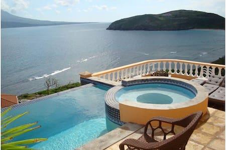 Paradise Villa In Turtle Beach  - Saint George Parish