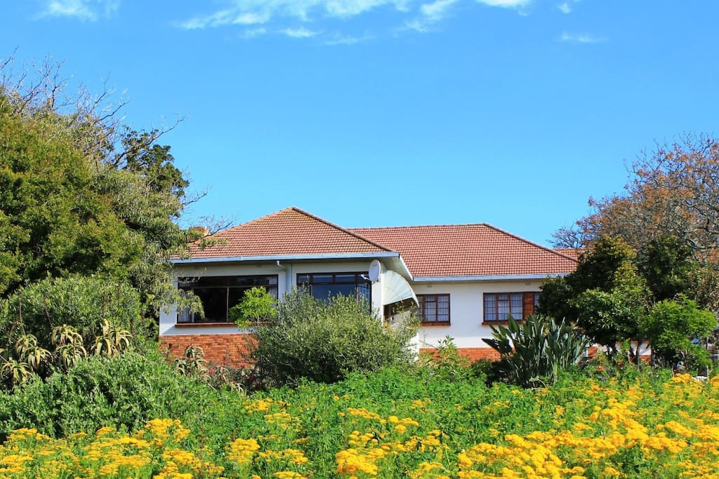 The Estate Manor Home with 10 hectare of lush garden, St Helena Bay SA
