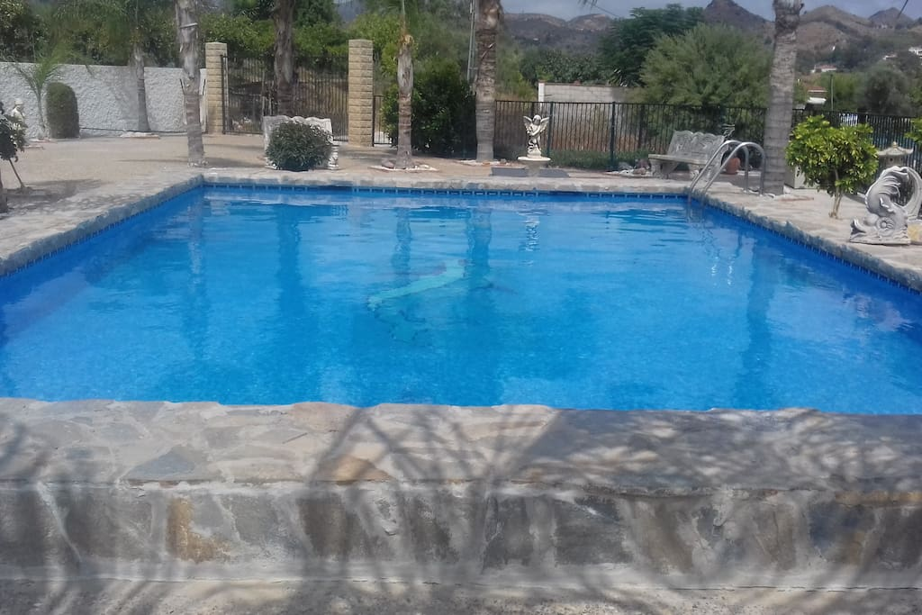 pool and seating area's