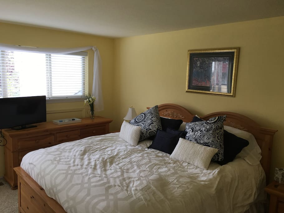 Master bedroom with king size pillow-top bed, tv, attached bathroom.