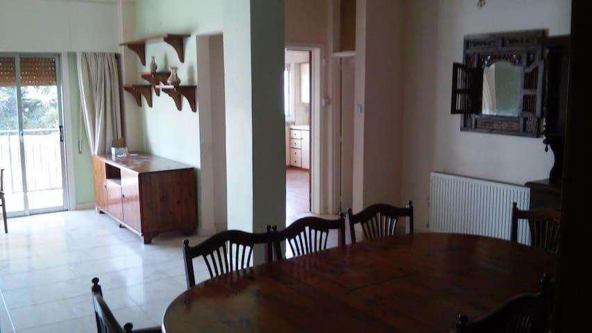 ενοικιάζεται οροφοδιαμέρισμα 120 τετραγωνικά -  stavros - Leilighet