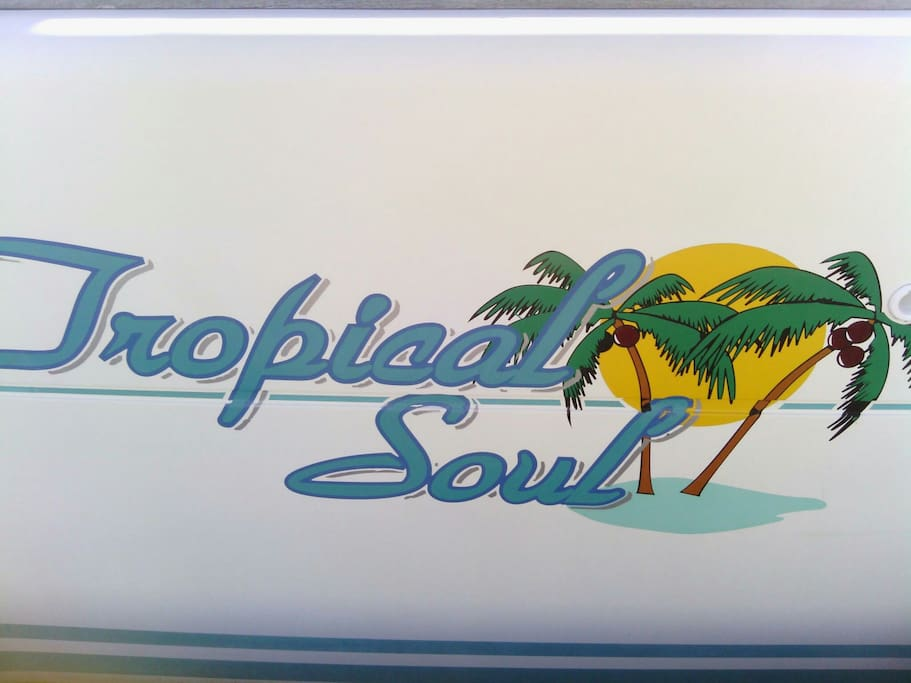 Tropical Soul - Here in far North QLD AUSTRALIA