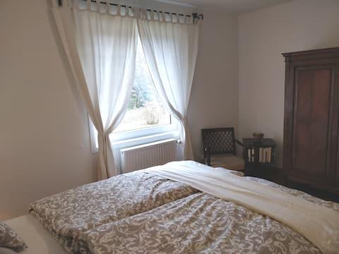 1 jolie chambre (sur 2) entre Genève et Annecy