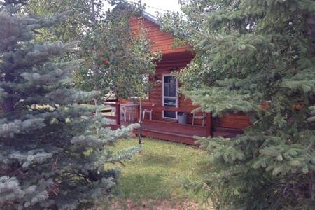 Elk's Grove Cabin # 3 (Near Moab, UT) - La Sal