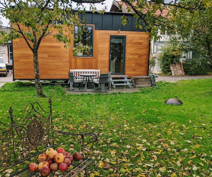 Tiny House OLGA im Schatten des Kirschbaums