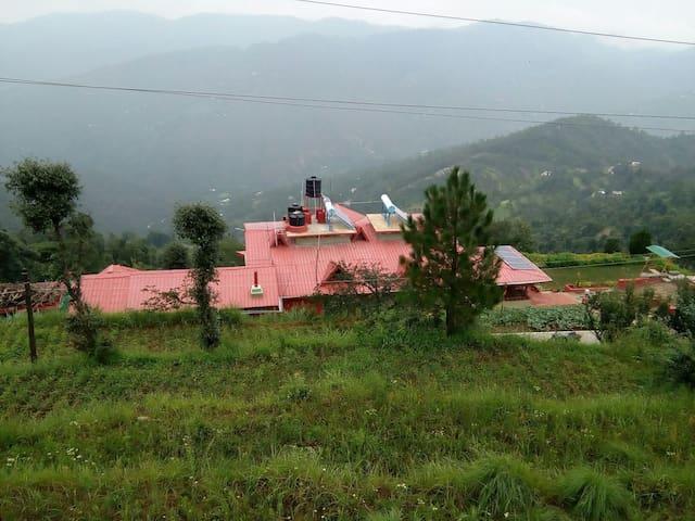 A serene peaceful energising abode. - Mukteshwar - Ház