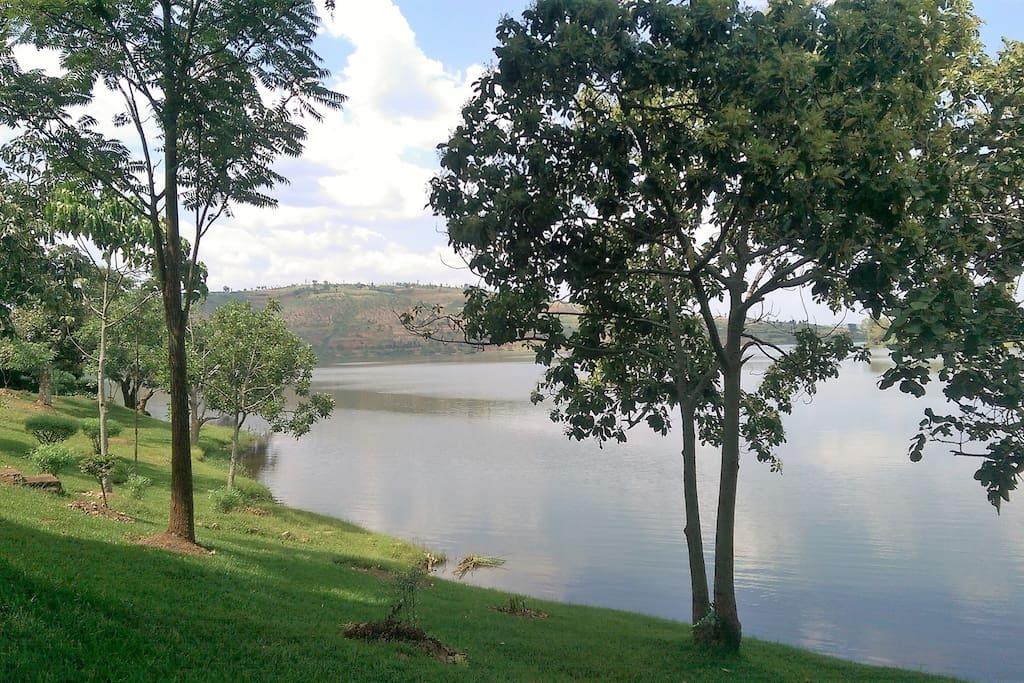 Lake Muhazi View