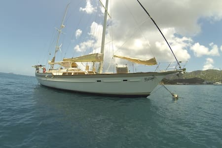 FLOATING HOME AWAY FROM HOME - Marigot - Lejlighed