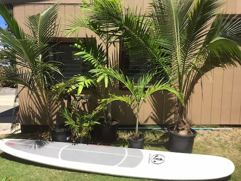 Surf Hideaway