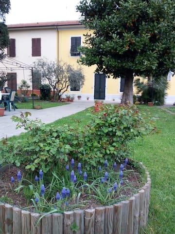 Appartamento Magnolia a 3,5 km da Lucca, WI-FI