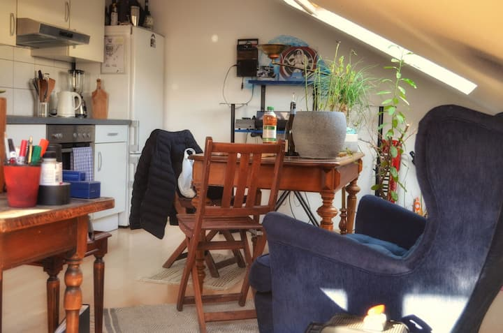Cosy Loft in the Mids of Basel