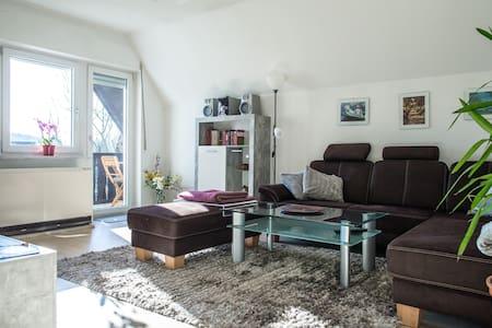 Bright appartment with sunny balcony near Altdorf