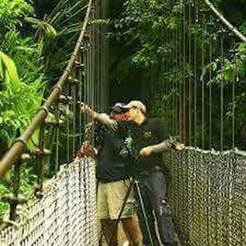 Arenal bridges guide host