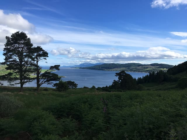Kyles of Bute- Summer style!