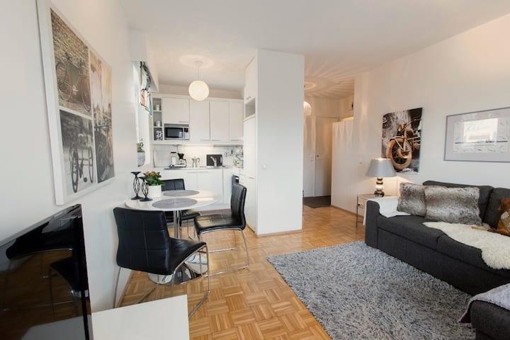 Arctic Apartment in Santa's City
