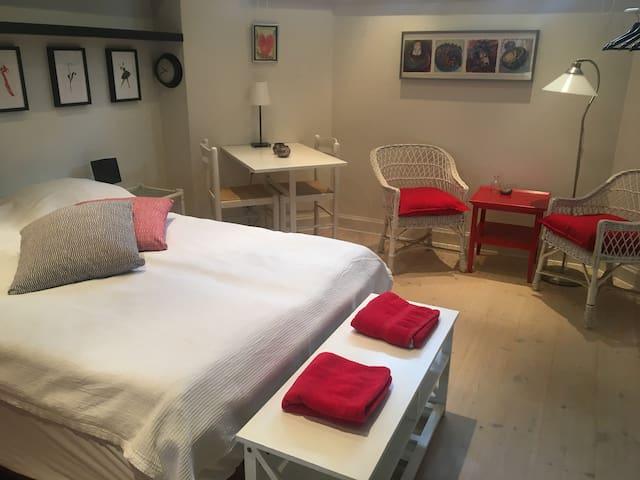 Stort lyst værelse i Odense centrum.