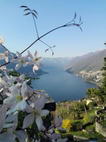 SWEET HOME & LAKE VIEW - Faggeto Lario, Molina - Huis