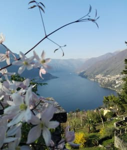 SWEET HOME & LAKE VIEW - Faggeto Lario, Molina - Haus