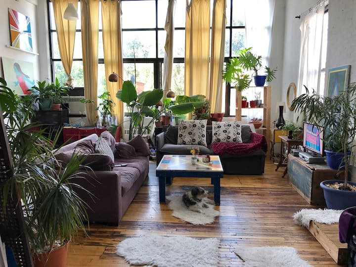 Sun and plant filled loft