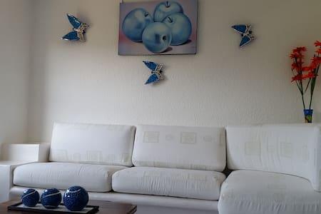 Condominio Pelicanos en Ixtapa