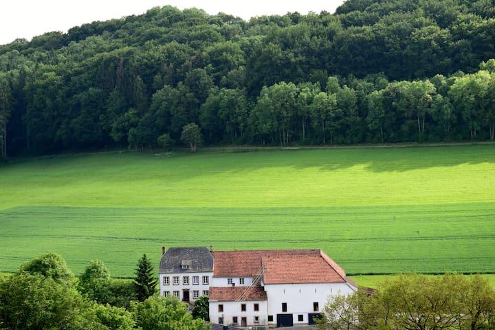 Natur pur auf dem Nobenhof (Eifel/Nähe Luxemburg)