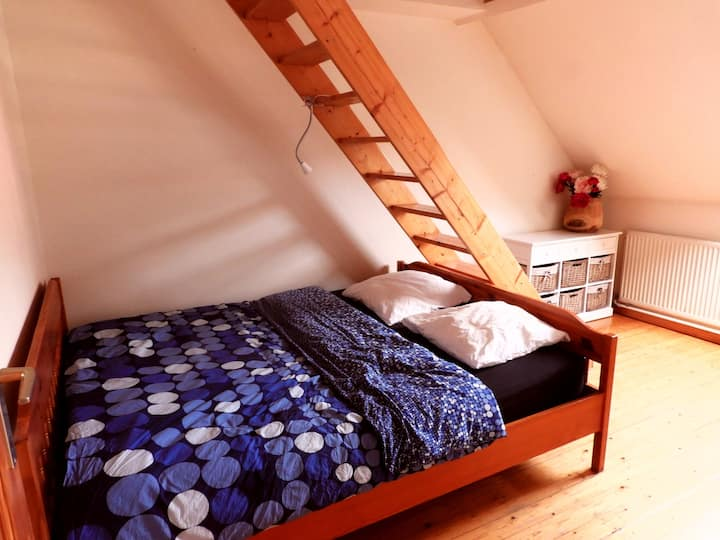 Perfect student/backpackersroom near city center