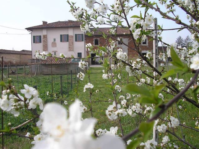 Il GIRASOLE ECOBIO 1 km dall'uscita A21 Pontevico - Gauzza - House