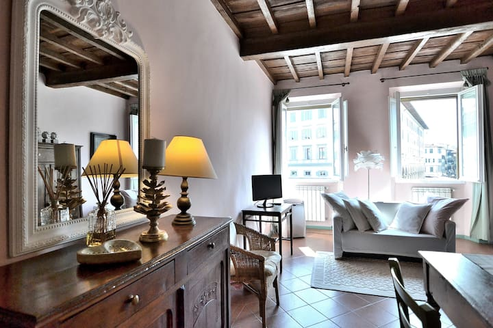 Charming apartment in the heart of Florence