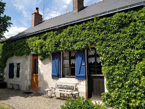 Traditional French Farmhouse with 4 meter pool