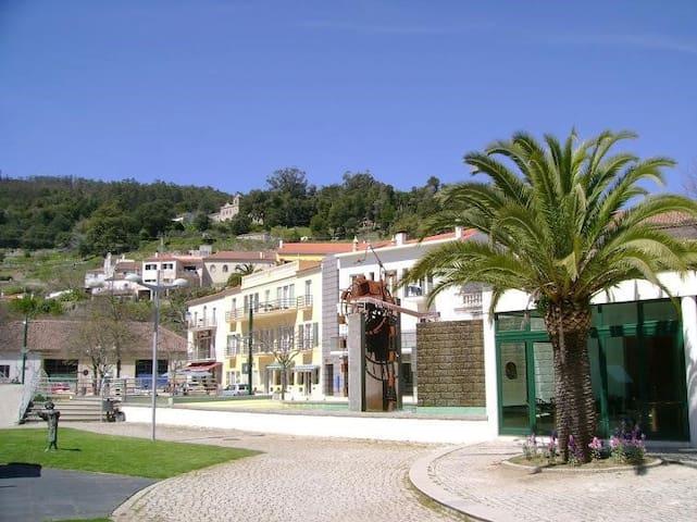 Casa zé duarte AL39839 - Monchique - Dom