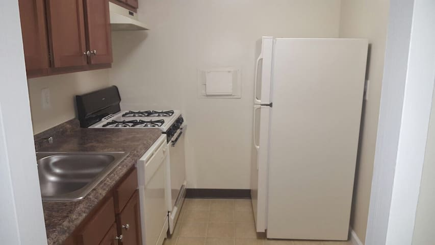 Shared space available - Silver Spring - Apartment