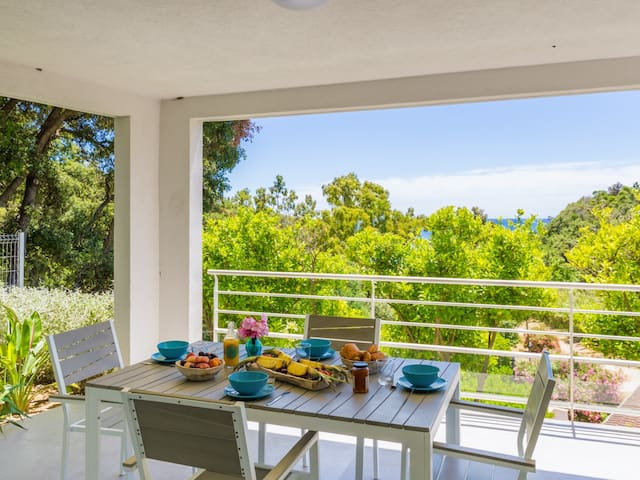 Nice AC flat feet on the sea with 50 sq. m terrasse in Cavalaire - Welkeys