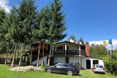 Alpinlife Guesthouse
