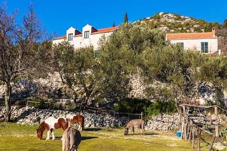 House in Nature & Organic food & Little Ranch - Dubrovnik - Haus