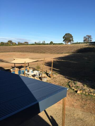 View to vineyard from guests deck.