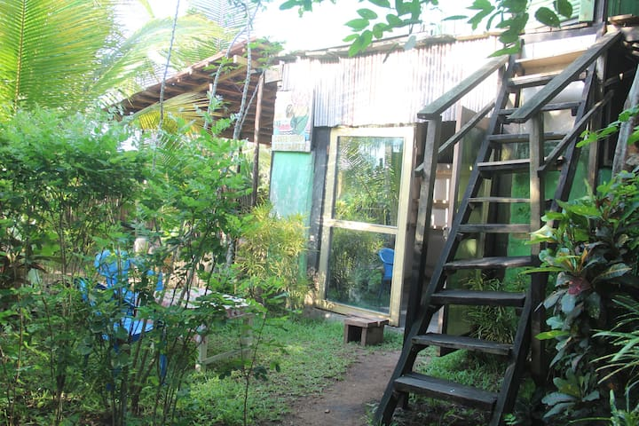 Steps up to the treehouse aloft with the birds.  Room upstairs with double bed, fan and mosquito net
