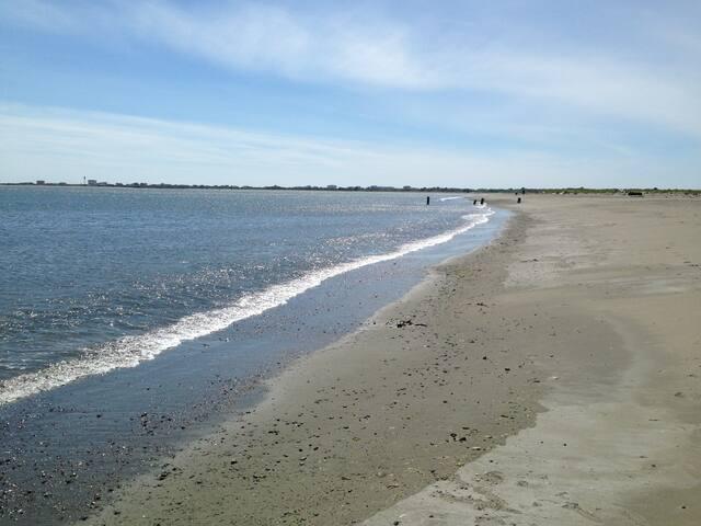 Beachscape A - Ocean Shores - Dom