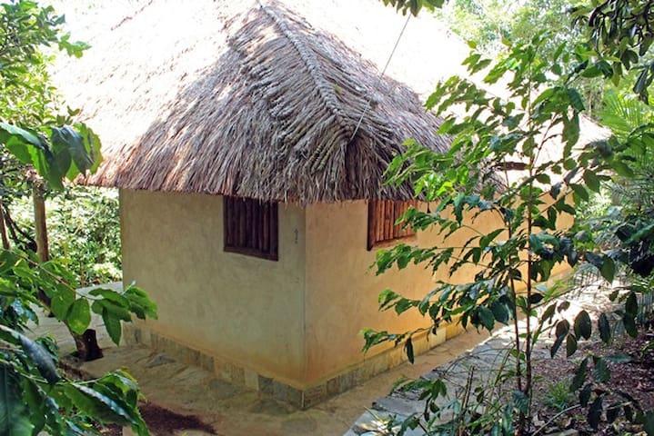 Finca la Pagua Cabaña de Barro - Xilitla  - Blockhütte
