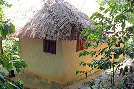 Finca la Pagua Cabaña de Barro - Xilitla  - Zomerhuis/Cottage