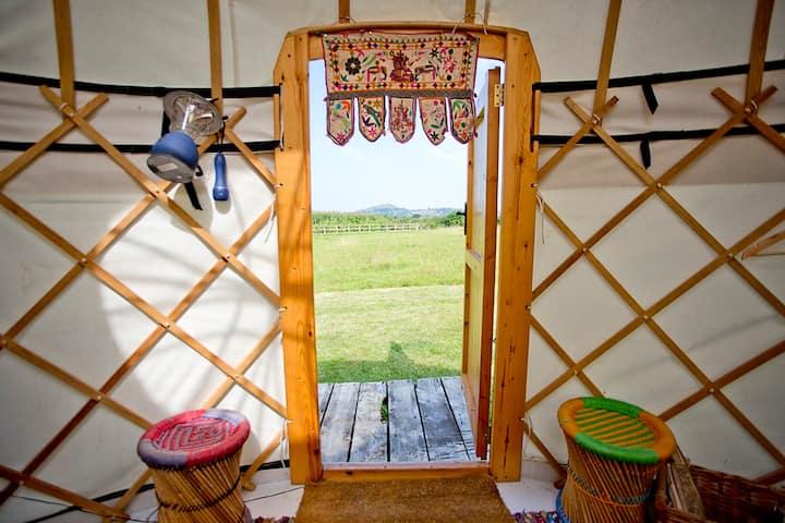 Empty Tin - Luxury Yurt sleeps 4 peaceful setting