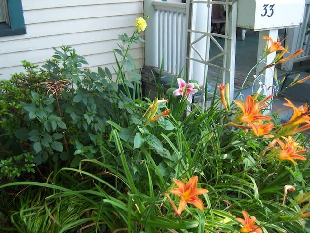 Mailbox garden in June