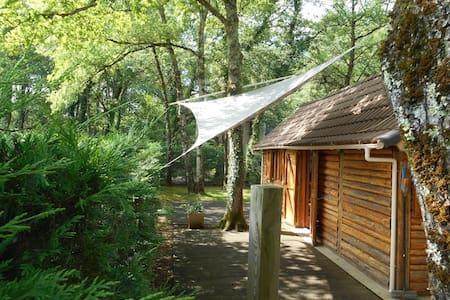 chalet bois de 30 m2 - Terrasson-Lavilledieu