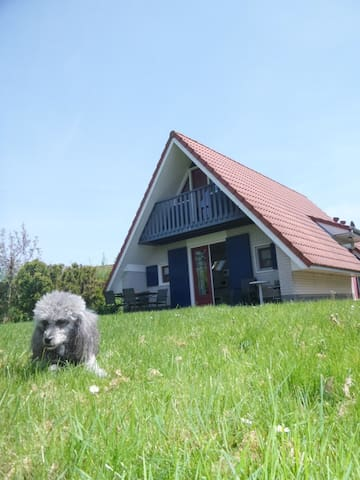 """Angelika"" Umzäuntes Haus in ruhiger Lage am meer - Anjum - Casa"
