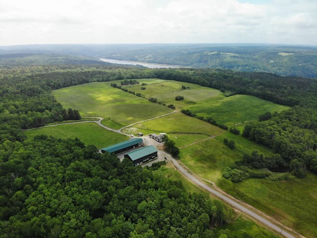 Hunting holiday on a farm with a lodge for 4 guest